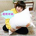3M Filtrete淨呼吸 防蟎纖維枕心(舒眠型) ~~~ 舒適好眠的新選擇