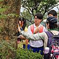 1050902 戶外教學-森林說石話-石門國中