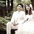 我們的婚紗照