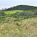 【沖繩久米島自由行】自然岩鳥口 比屋定BANTA觀景台  超過百年的五枝松 米島酒造喝泡盛 福屋買味噌餅乾