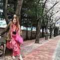 【韓國旅遊】tripbaa趣吧 跟著韓綜賞櫻去-十里櫻花路+光明洞窟+寶亭洞咖啡街一日遊