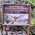 【神戶旅遊】神戶動物王國 跟水豚君還有可愛動物們近距離的拍照玩耍吧!文末有門票八折優惠