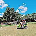 【桃園 景點】青林農場 蓮花池畔玻璃教堂 草地上的小車車 親子遊玩 控窯烤肉的好地方