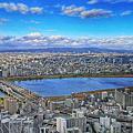 【日本 旅遊】大阪周遊卡OSAKA AMAZING PASS  免費玩超過40個景點 使用期間無限次搭乘電車及巴士