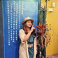 【嘉義 住宿】安蘭居國際青年館 可愛彩繪的上下舖4人房 嘉義車站走路5分鐘 提供共遊好伴揪團旅遊服務