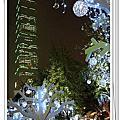 20091224 耶誕夜 東區