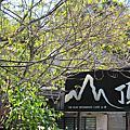 陽明山之山頂餐廳