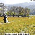 時尚風華精品民宿-2013三星銀柳米香節