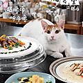 臺北市流浪貓保護協會宣傳物