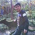 馬灣公園_2009
