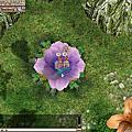 仙境傳說 Ragnarok Online