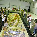 ●20100522●國際3D地景藝術展●