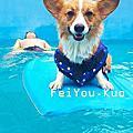 [蓋腳印] 新店 Good Dog 妙狗寵物游泳池の游泳初體驗