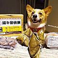 [贊助] 毛孩鮮食館 端午節毛孩吃粽粽