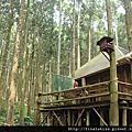 馬武督探索森林˙綠光小學