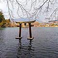 湯布院金麟湖之美