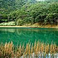 2009.1.31汐止夢湖