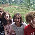 峇里島 D3 2011-6-6