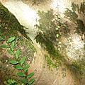 石碇大自然的畫作