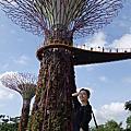 2013 新加坡
