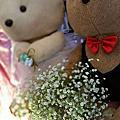 宜蘭 婚禮佈置 20151101頭城自宅