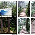 2009東眼山森林浴