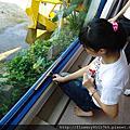 南澳高中花鹿米一日實習