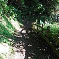 棲蘭山莊 壯麗的大自然