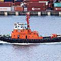 Coast Guard & Official ship