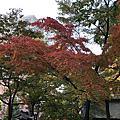 2019北海道-中島公園