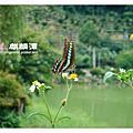 2011.07.03 麒麟潭+妖怪村+明山森林會館