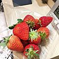 阿蘇 果實之國採草莓