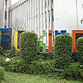 20110211復興三路山櫻花
