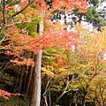 06年剛退伍時到京都大阪旅遊