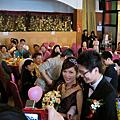 20101114 養蟲結婚@桃園東北角
