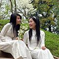 越南-客自越南來節目