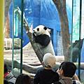 140125 動物園&長毛象