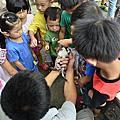 新竹親子團-生態知性之旅