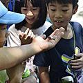 艾唯兒幼兒園-生態知性之旅