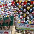 2009新社花海遊