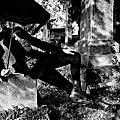 時尚攝影師 Mikael Jansson X 怪獸與牠們的產地男星 Ezra Miller