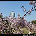 旅遊-新竹市