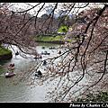 2017-04 東京春爛漫