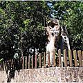 2011-06-11竹山實驗林