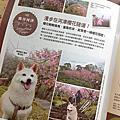 2012-02-25-鹿谷台大實驗林