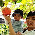 20100703_旺山南瓜園