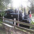 2009 懷舊之旅 - 蒸汽小火車