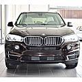 16 BMW X5 35i 深棕色 #4148