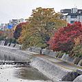 京都 祇園 ぎおん(Kyoto Gion)