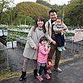 2017.02.26苗栗棗莊&大湖採草莓